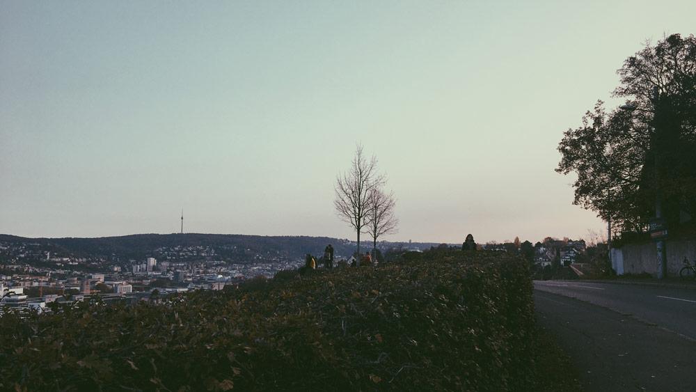 Streifzug Birkenwaldstrasse