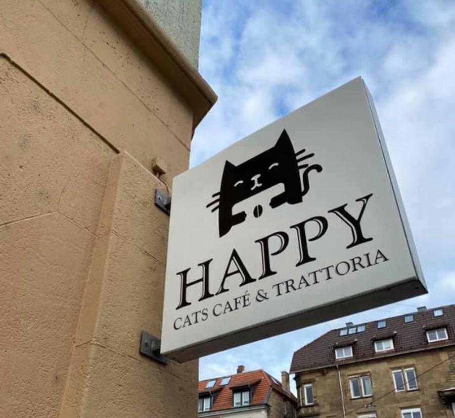 happy Cats Café & Trattoria Stuttgart Katzencafé