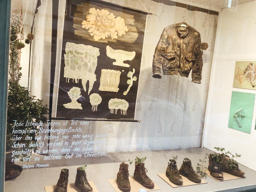 Fenster-Ausstellung Projektraum OSTEND
